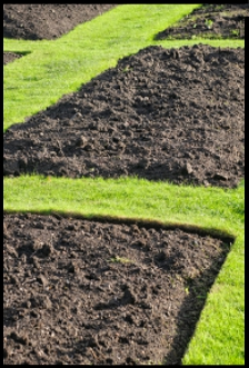 Landscaping in Rockville MD