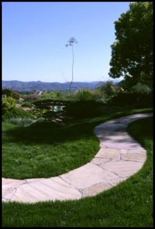 Landscaping in Laurel MD